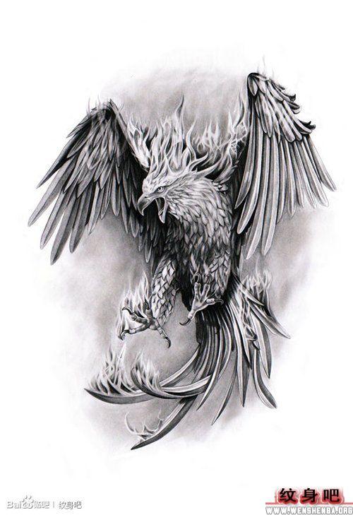 经典的黑灰老鹰纹身手稿