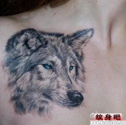 美女胸部狼头纹身图片