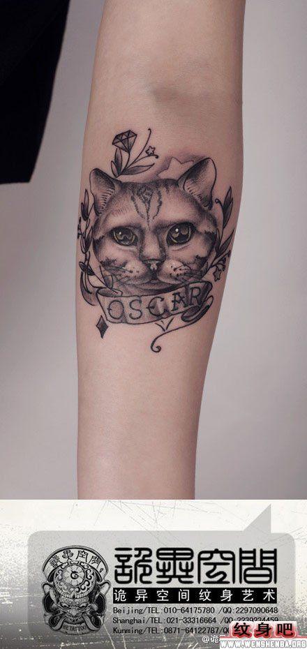 其它动物纹身图案大全 > 正文            男人前胸兔子与牛纹身图片